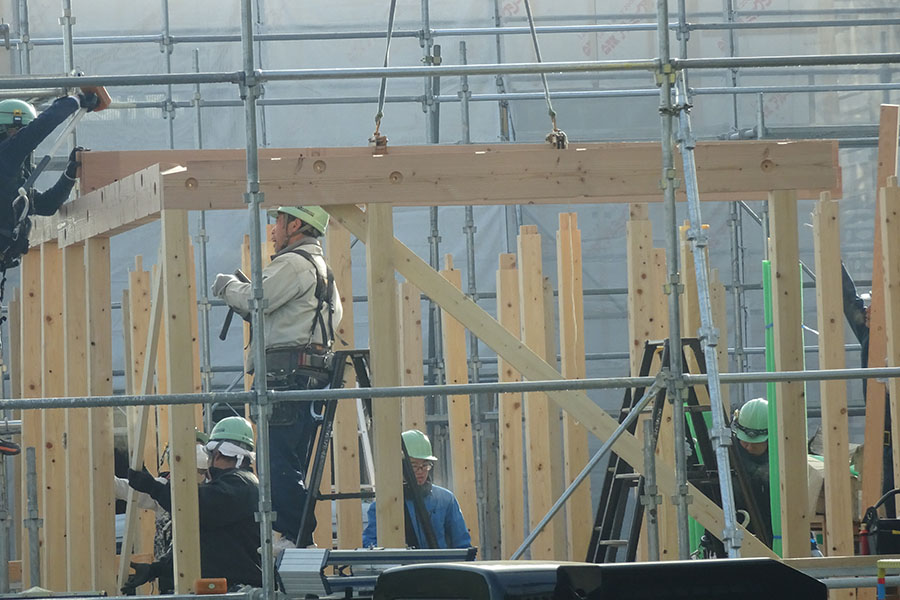 Set up of the timber frame