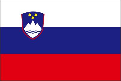 スロベニア営業部